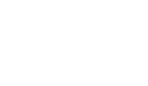 MSG-Gruppe
